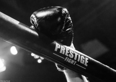 Prestige-Fight-boxe-muay-thai-gala-Wagram-gants-de-boxe